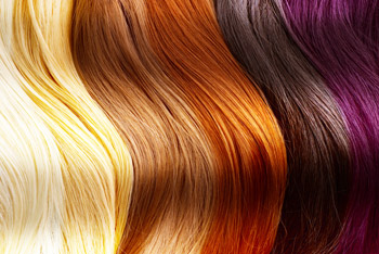 haircolorsl